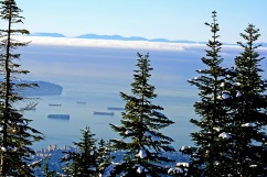 Vancouver from Grouse 2668 Copyright Shelagh Donnelly