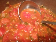 Lentil and Tomato Soup copyright Shelagh Donnelly