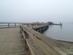 Jericho dock in fog 171 Copyright Shelagh Donnelly