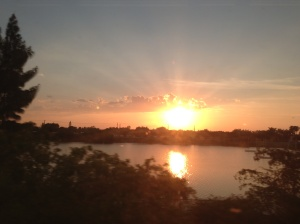 A bright spot along the train ride south