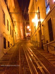 Lisbon 52733 Copyright Shelagh Donnelly
