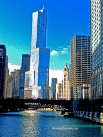 Chicago Skyline 2014 Copyright Shelagh Donnelly