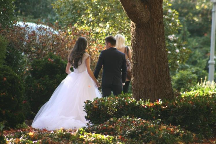 Fall Wedding 7799 Copyright Shelagh Donnelly