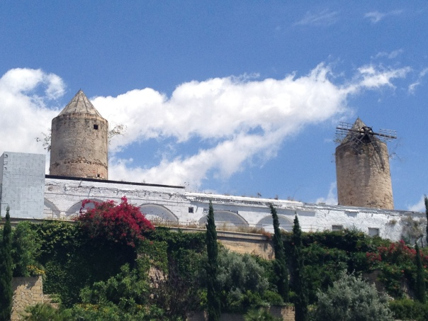 Palma De Mallorca 2585 Copyright Shelagh Donnelly
