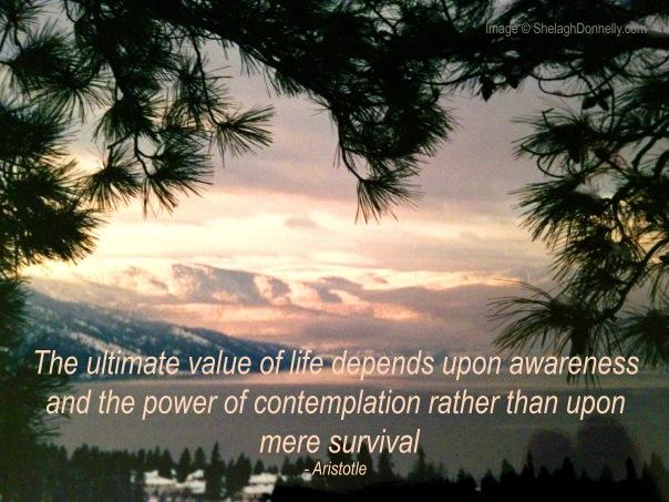 Okanagan Lake Winter Copyright Shelagh Donnelly