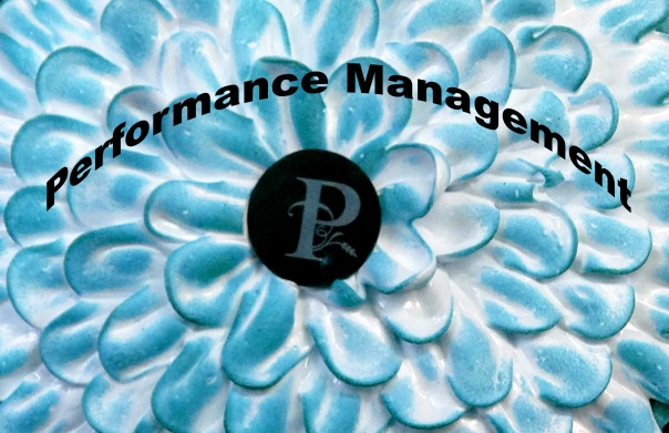 Performance Management Copyright Shelagh Donnelly