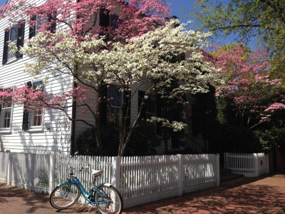 Exploring Old Town Alexandria by Bike Copyright Shelagh Donnelly