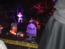 halloween-6062-copyright-shelagh-donnelly