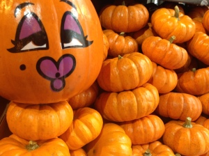 mini-pumpkins-in-market-copyright-shelagh-donnelly
