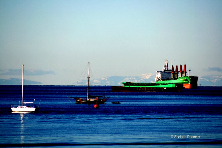 boats-in-english-bay-january-17-2869-copyright-shelagh-donnelly